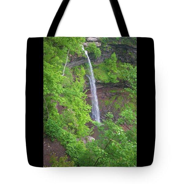 Kaaterskill Falls 2018 Tote Bag