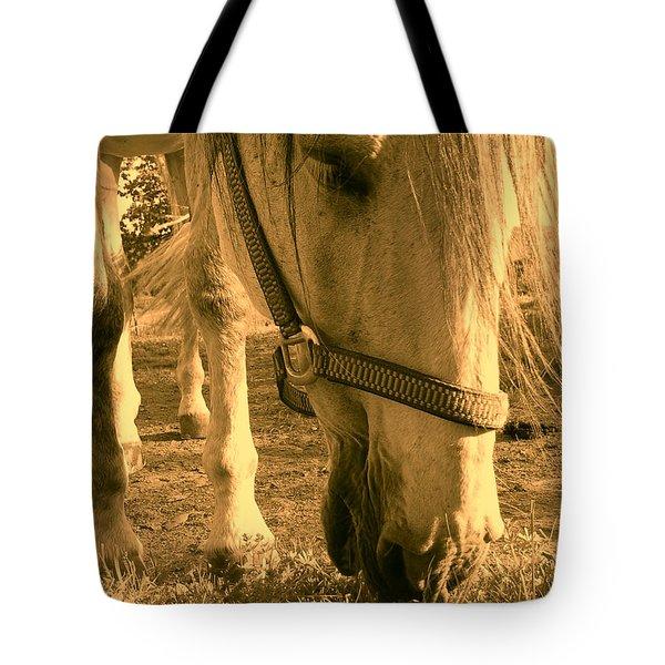 Kahn I Tote Bag