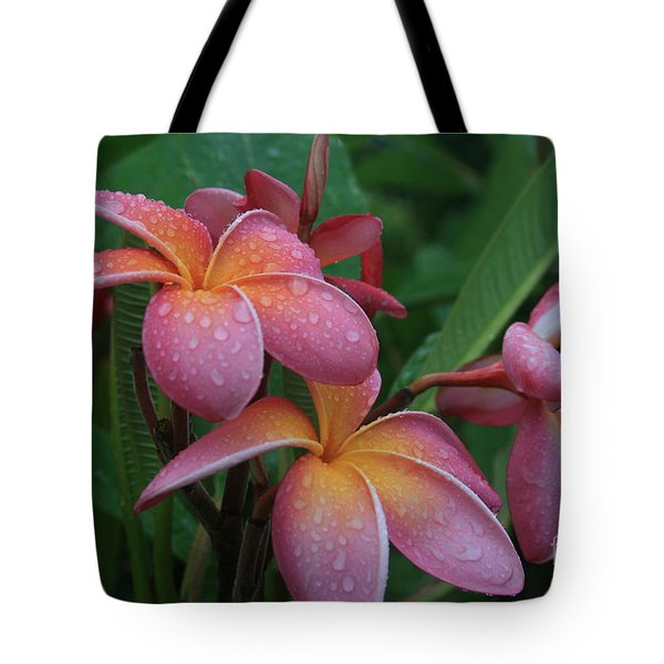 Kaikena Dreams Melia Aloha Keanae Tote Bag