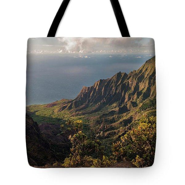 Kalalau Valley 3 Tote Bag by Brian Harig