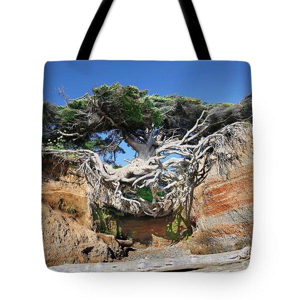Kalaloch Tree Of Life Tote Bag