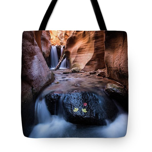 Tote Bag featuring the photograph Kanarra Creek by Wesley Aston
