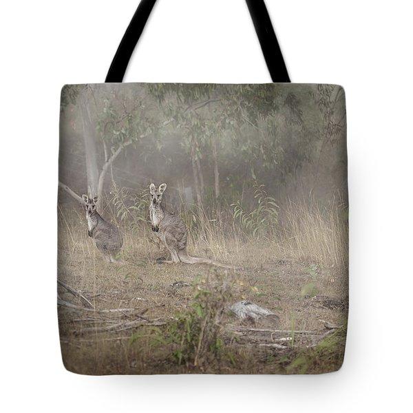 Kangaroos In The Mist Tote Bag