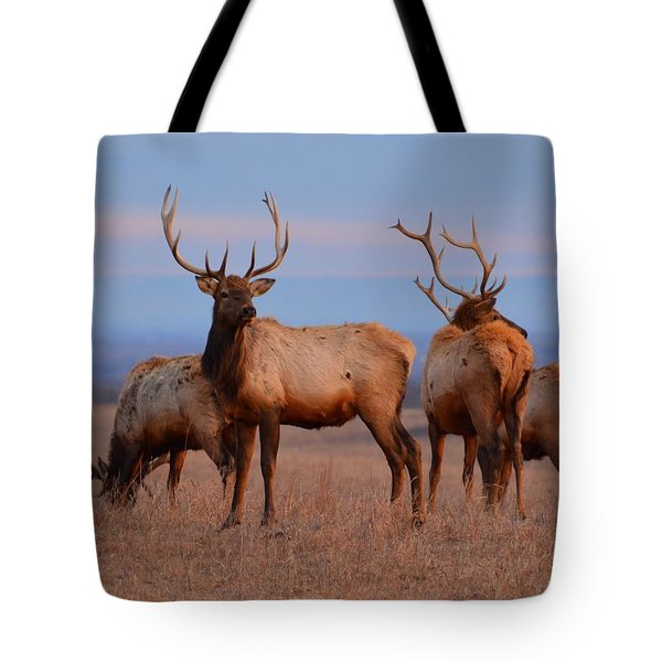 Kansas Elk 2 Tote Bag by Keith Stokes