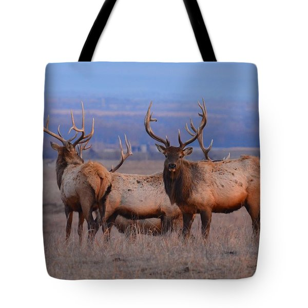 Kansas Elk Tote Bag