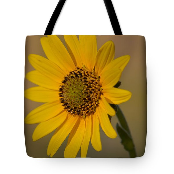 Kansas Flower One Tote Bag
