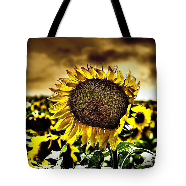Tote Bag featuring the photograph Kansas Sunflower by Jeremy Martinson