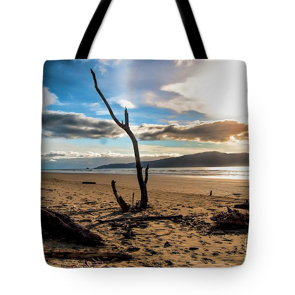 Kapiti Sunset Tote Bag by Karen Lewis