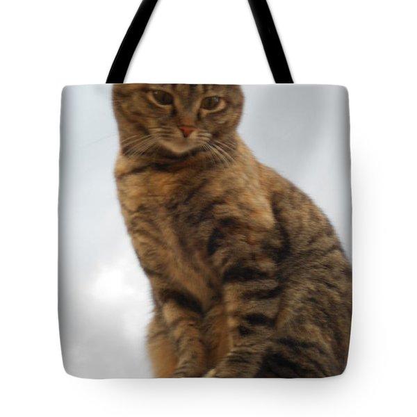 Kat Soop Tote Bag