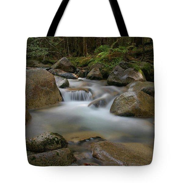 Katahdin Stream Cascades Tote Bag
