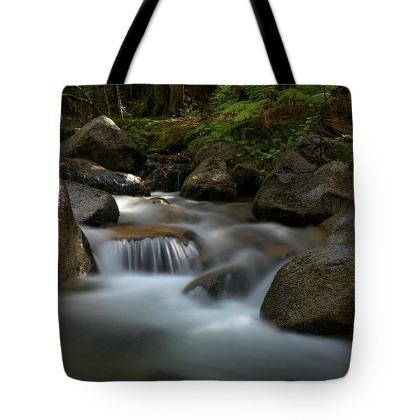 Katahdin Stream In The Shade Tote Bag