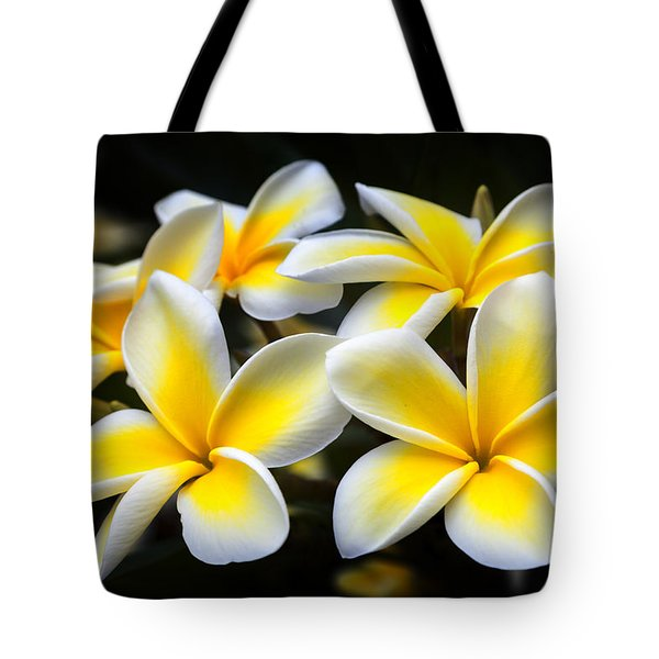 Kauai Plumerias Large Canvas Art, Canvas Print, Large Art, Large Wall Decor, Home Decor, Photograph Tote Bag by David Millenheft