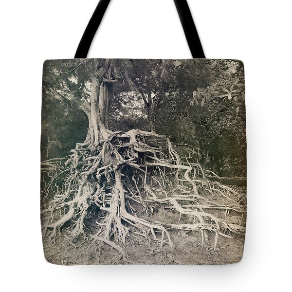 Tote Bag featuring the photograph Kauai by Lucian Capellaro