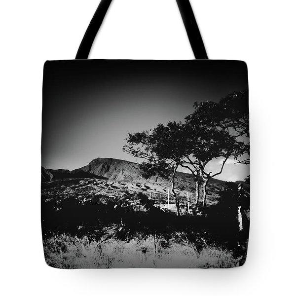 Kaupo Gap East Maui Hawaii Tote Bag by Sharon Mau