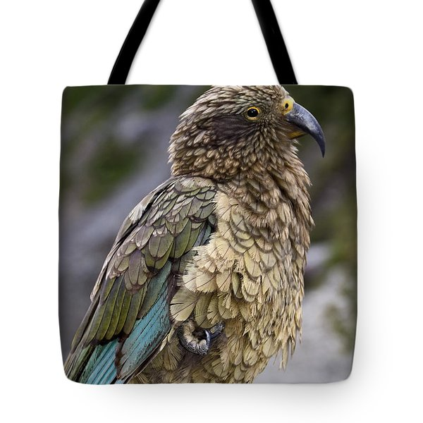 Kea Bird Tote Bag by Sally Weigand
