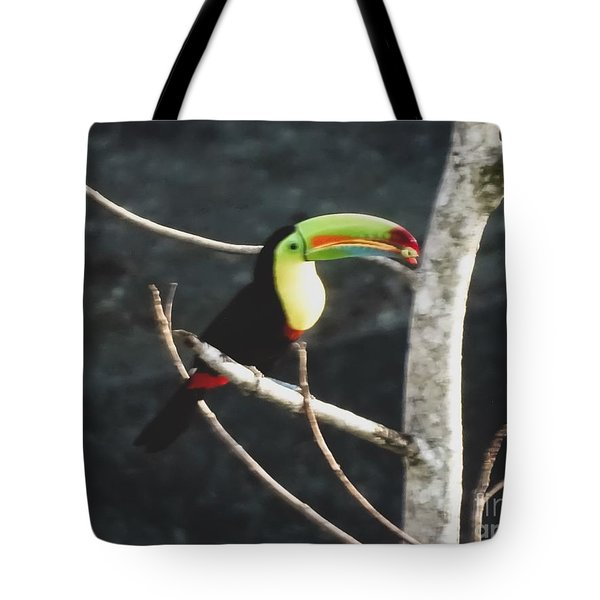 Keel-billed Toucan Tote Bag