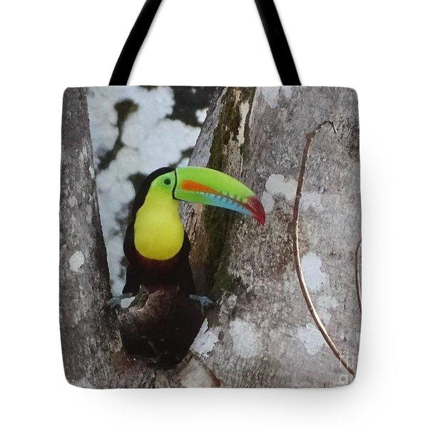 Keel-billed Toucan #2 Tote Bag