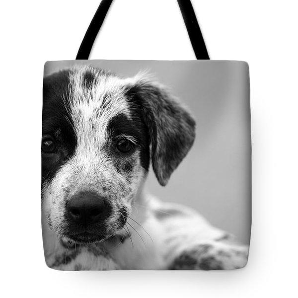 Keep Me Tote Bag by Amanda Barcon