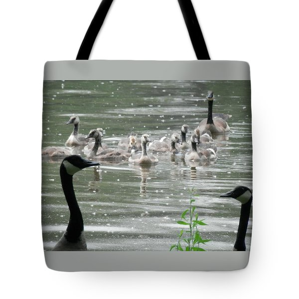 Keepers Of The Gate Tote Bag