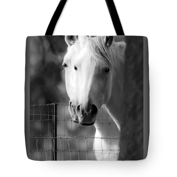 Tote Bag featuring the photograph Keeping Their Eyes On Us D3126 by Wes and Dotty Weber