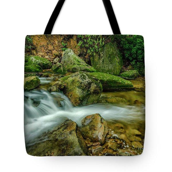 Kens Creek In Cranberry Wilderness Tote Bag