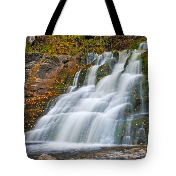Kent Falls Tote Bag by David Freuthal