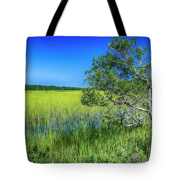 Kent Mitchell Nature Trail, Bald Head Island Tote Bag