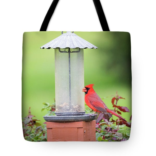Tote Bag featuring the photograph Kentucky Cardinal  by Ricky L Jones
