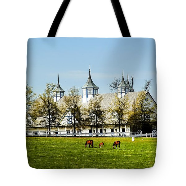 Revised Kentucky Horse Barn Hotel 2 Tote Bag
