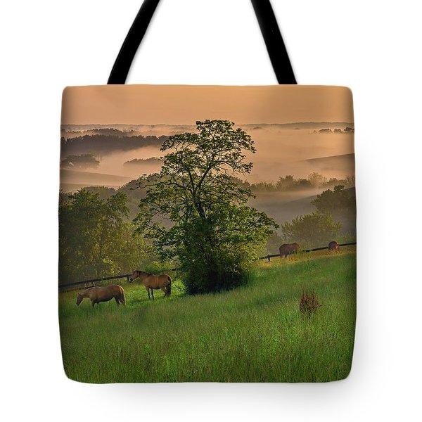 Kentucky Morning Tote Bag