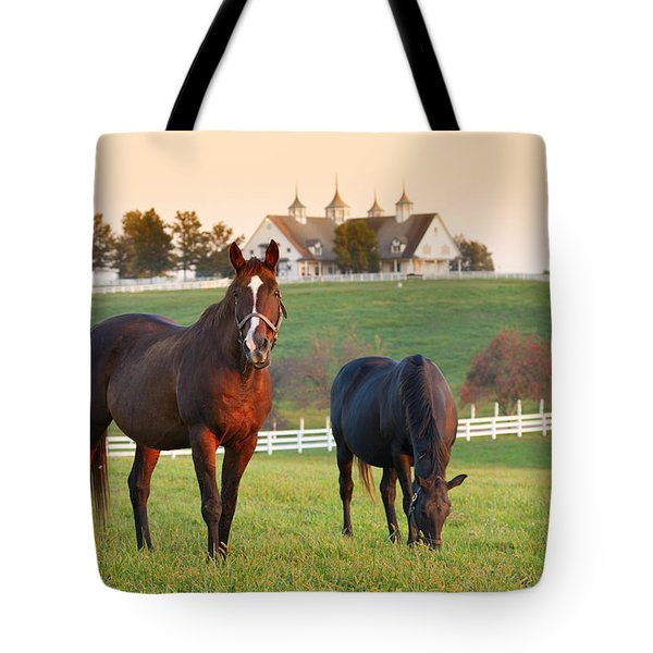 Kentucky Pride Tote Bag