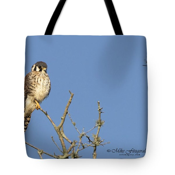 Kestrel And Lunch Tote Bag
