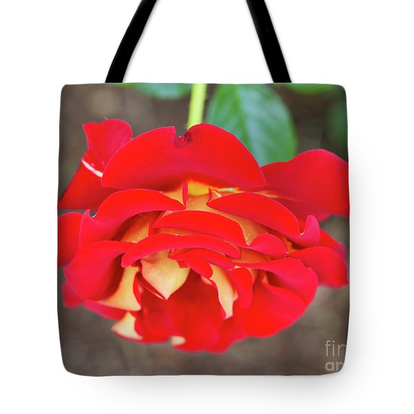 Ketchup And Mustard Rose Tote Bag by Louise Heusinkveld