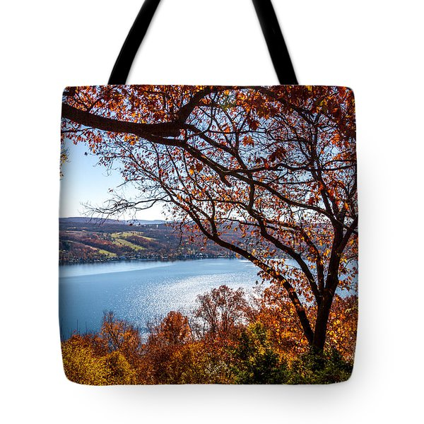 Tote Bag featuring the photograph Keuka Lake Vista by William Norton