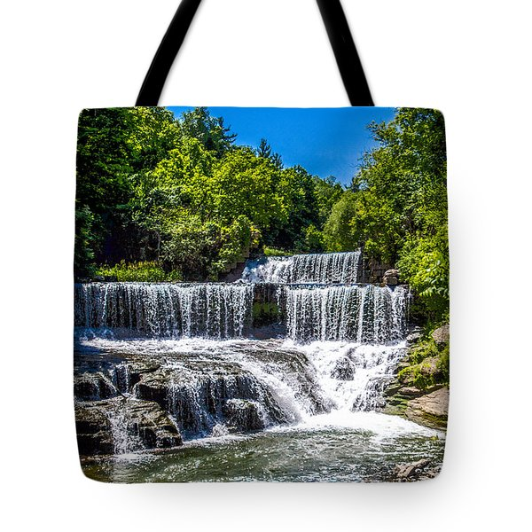 Tote Bag featuring the photograph Keuka Outlet Waterfall by William Norton