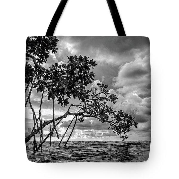 Key Largo Mangroves Tote Bag