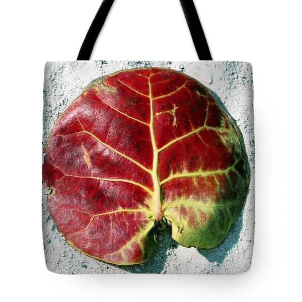 Key West Leaf In The Sand Tote Bag