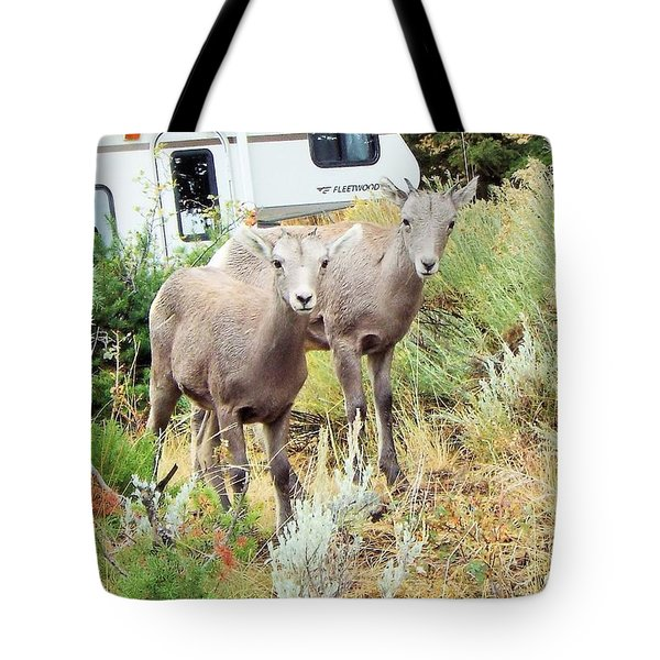 Kid Goats Tote Bag