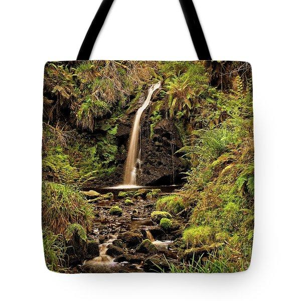 Kielder Forest Waterfall Tote Bag