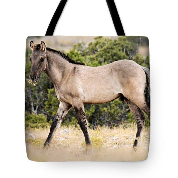 Kiger Colt Tote Bag