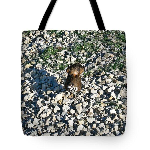 Killdeer 2 Tote Bag by Douglas Barnett