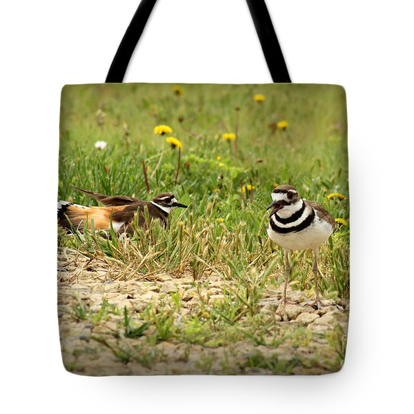 Tote Bag featuring the photograph Killdeer Theatrics by E B Schmidt