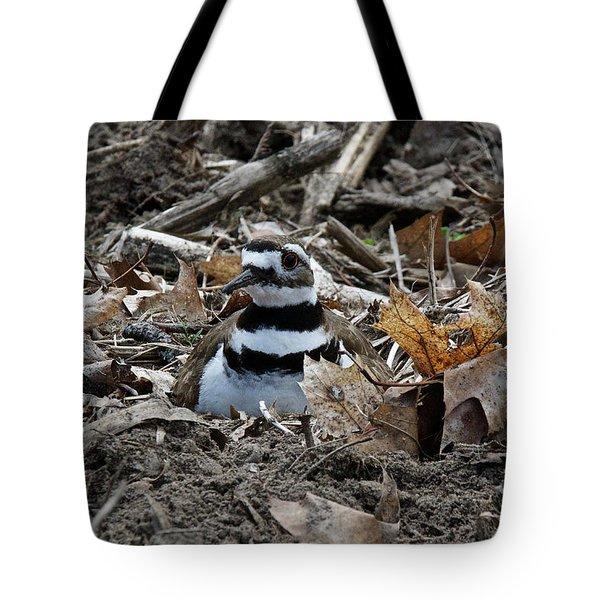 Killdeer On It's Nest 2682 Tote Bag
