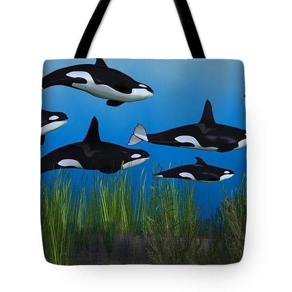 Killer Whale Pod Tote Bag by Corey Ford