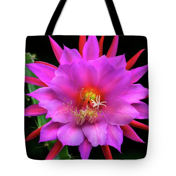 Kimnach's Pink Orchid Cactus Tote Bag