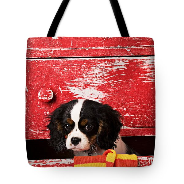 King Charles Cavalier Puppy  Tote Bag by Garry Gay
