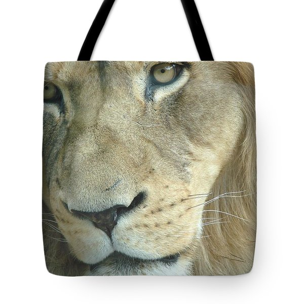 Tote Bag featuring the photograph King by Margaret Bobb