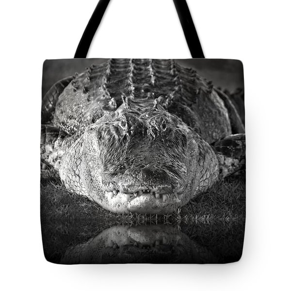 King Of The Glades Tote Bag by Mark Andrew Thomas