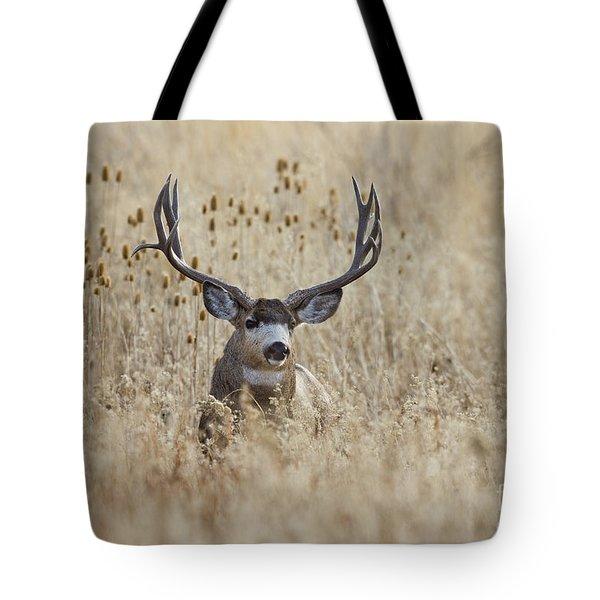 King Of The Marsh Tote Bag