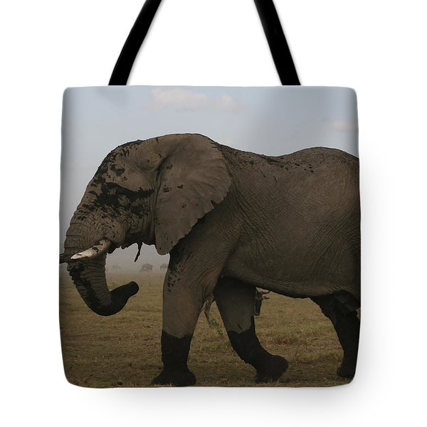 Tote Bag featuring the photograph King Of The Savannah by Gary Hall